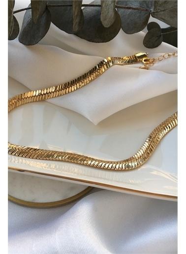 My Joyas Design Özel Seri Balık Sırtı Zincir Kolye Altın